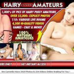 Hairy Pussy Amateurs New Porn Password