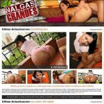 Nalgas Grandes High Quality Premium Account