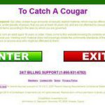 To Catch A Cougar New Porn Password
