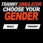 Tranny Simulator Very Rare Porn Passwords